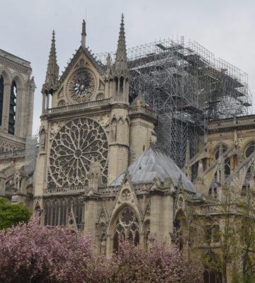 Communiqué du Ministère de la Culture sur la collecte pour Notre-Dame